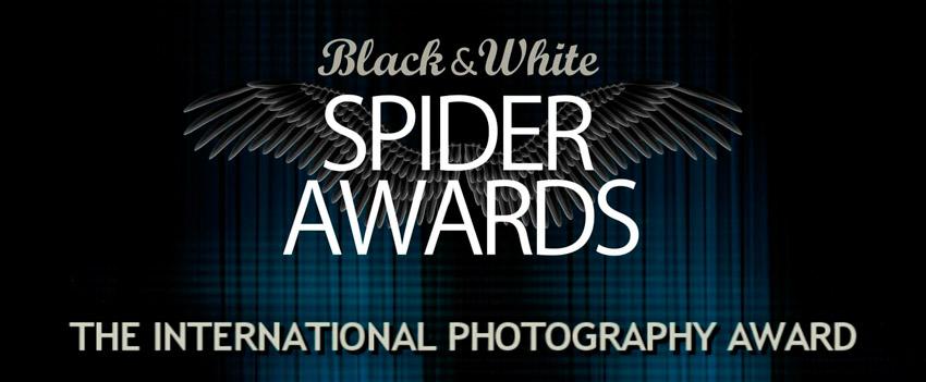 Daniel Arranz, profesor de La Máquina, 1er premio Black & White Spider de retrato