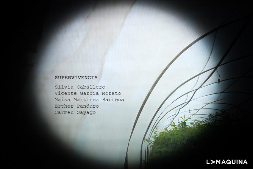 Exposición colectiva «Supervivencia»