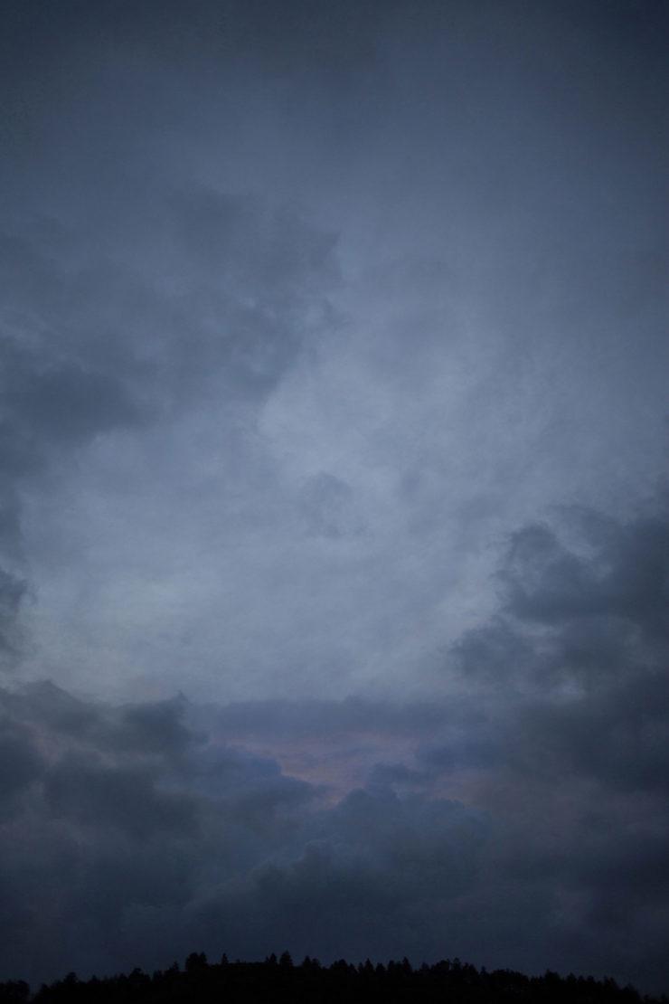 Laura Morales, Ha venido el desaforado olor del cielo