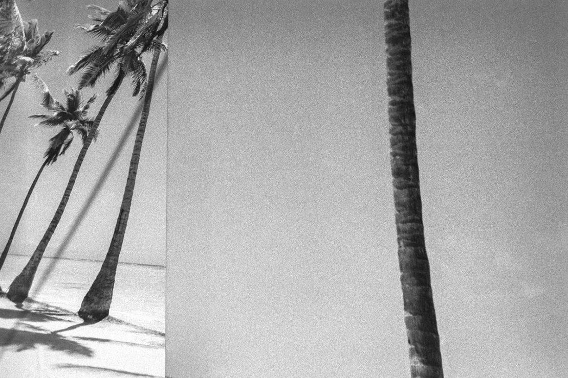 Cristóbal Benavente Sosa, El desierto de lo real