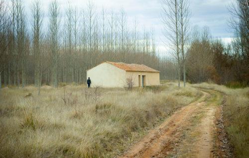 Curso online de verano El paisaje contemporáneo en el proyecto personal
