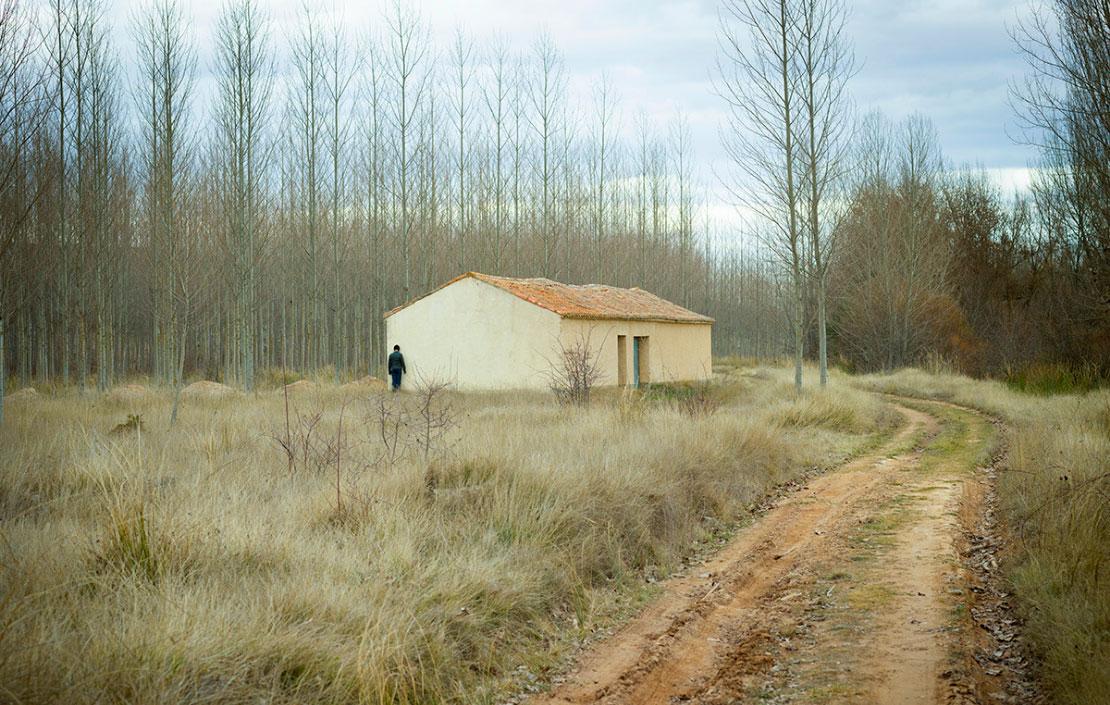 curso paisaje contemporáneo
